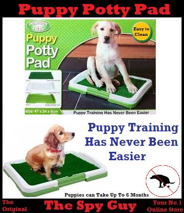 Dog habitat rescue potty pad training your puppy dog for Dog potty training problems
